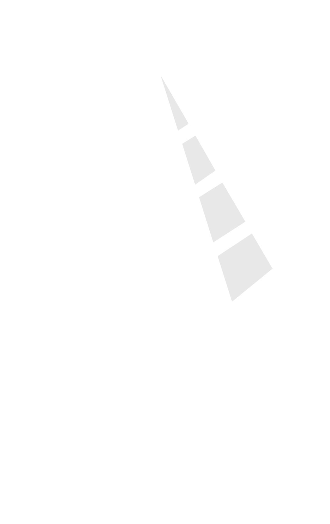 Customized HR Softwares
